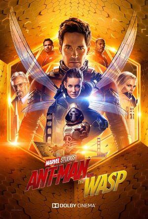 Orden cronológico Marvel 23 Poster Ant-Man y la Avispa escena postcreditos