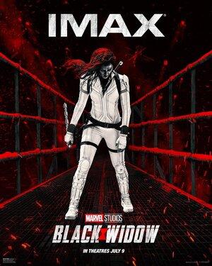 Pelicula Black Widow Poster 6