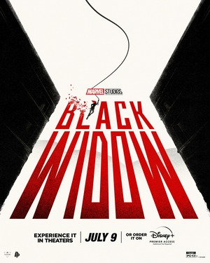 Poster de Black Widow 14
